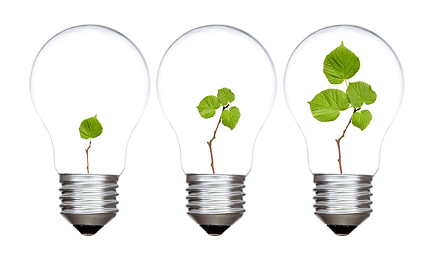 Three light bulbs with green plants inside - image licensed by Ingram Image