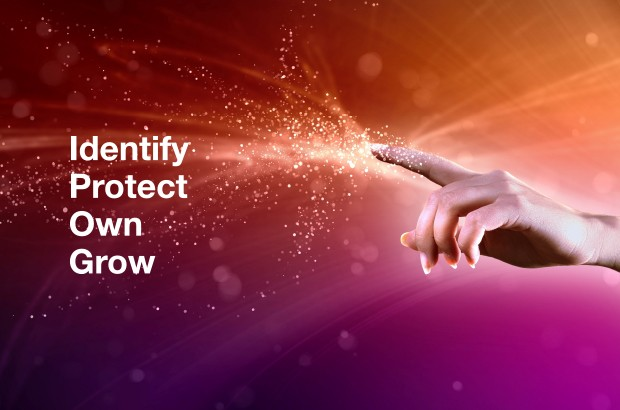 "Image of finger pointing with text ""Identify, Protect, Own, Grow""."