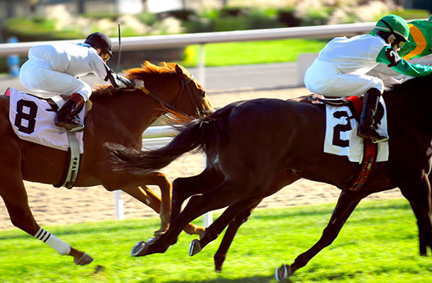 Image of horse racing, two horses and two jockeys.