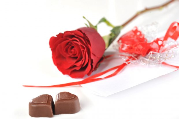 A red rose with two heart shaped chocolates