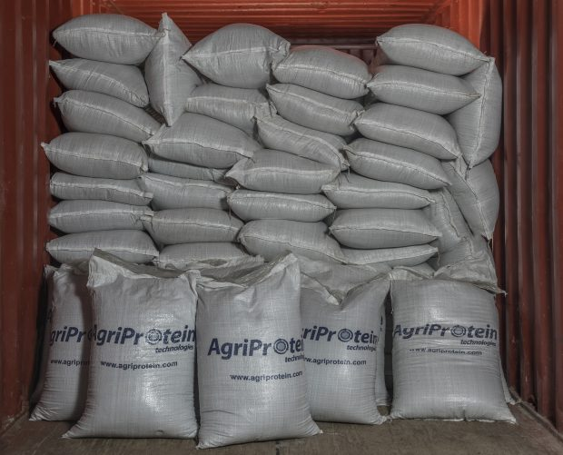 Bags of AgriProtein