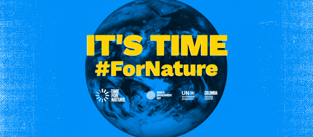 The words IT'S TIME in capital yellow letters with the hashtag For Nature underneath and a list of organisations involved. This is set in front of a blue image of Earth.